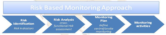 Risk-Based Monitoring Approach